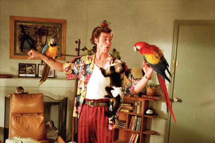 Jim Carrey in Ace Ventura: Pet Detective (1994)