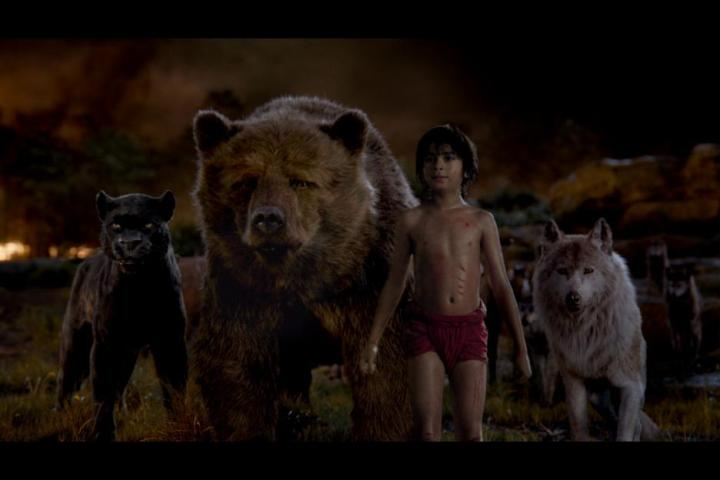 Bill Murray, Ben Kingsley, Lupita Nyong'o, and Neel Sethi in The Jungle Book (2016)
