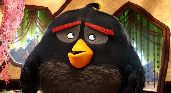 Danny McBride in Angry Birds (2016)
