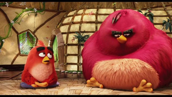 Sean Penn and Jason Sudeikis in Angry Birds (2016)