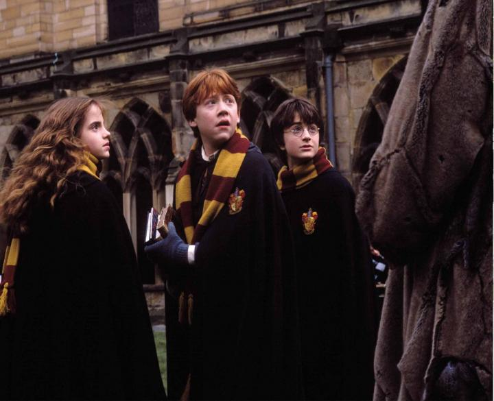 Rupert Grint, Daniel Radcliffe, and Emma Watson in Harry Potter and the Chamber of Secrets (2002)