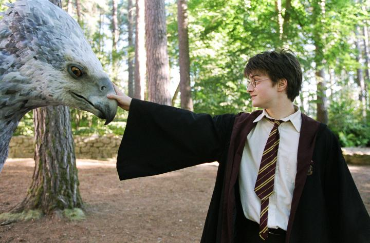 Daniel Radcliffe in Harry Potter and the Prisoner of Azkaban (2004)