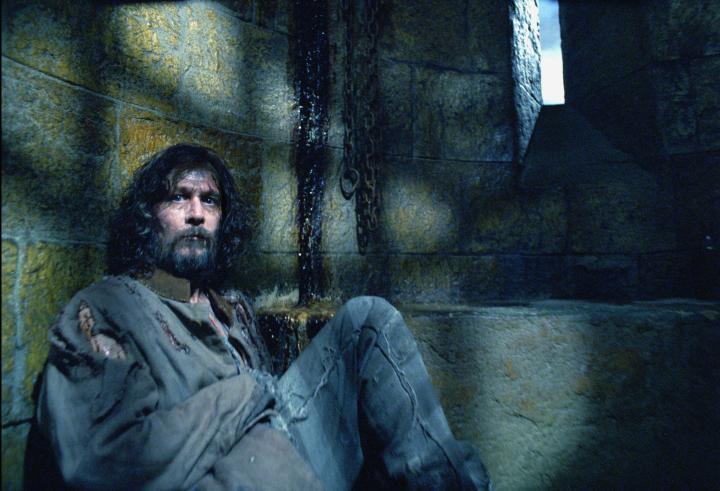 Gary Oldman in Harry Potter and the Prisoner of Azkaban (2004)